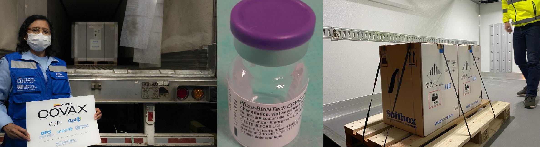 covax pfizer